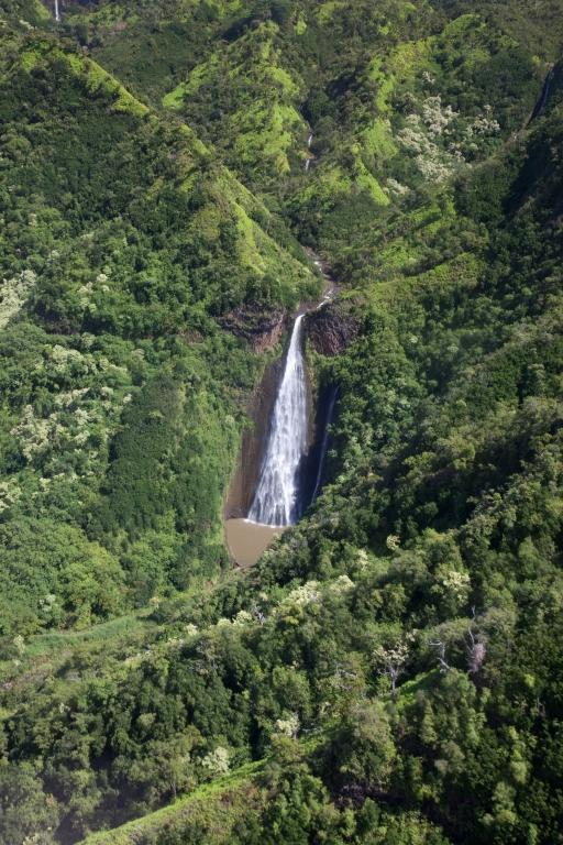 KAUAI_Wasserfall
