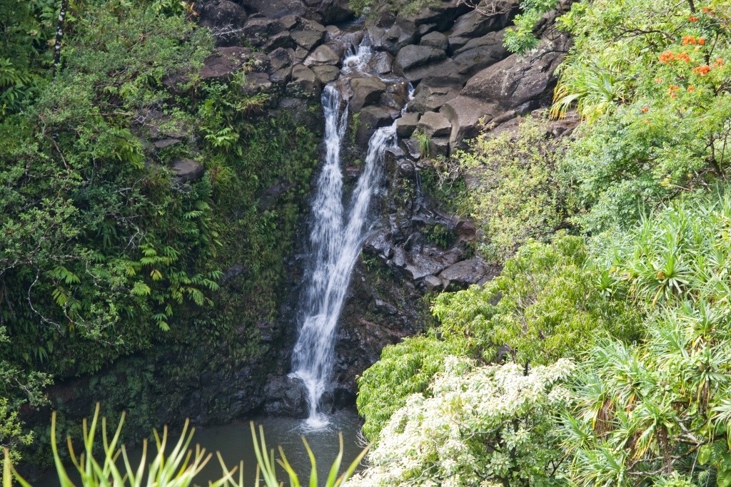 Maui_GardenofEden