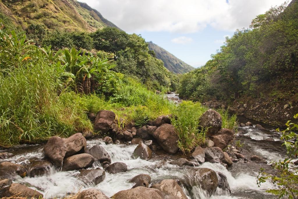 Maui_IaoValley