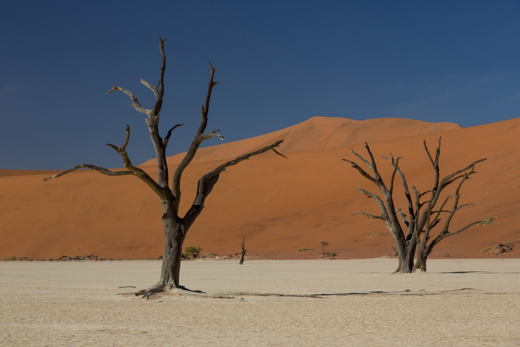 Namibia_Deadvlei