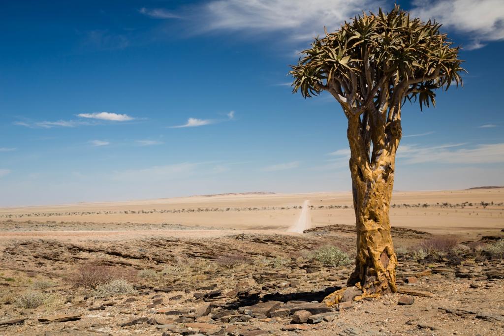 Namibia_Hochland