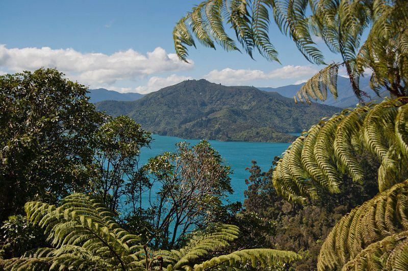 neuseeland, Abel_Tasman_nationalpark