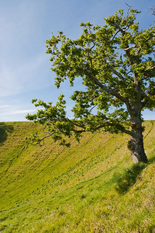 neuseeland, Mount Eden