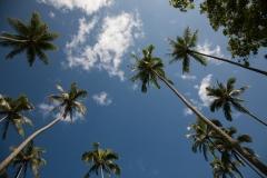 OAHU_Ostküste