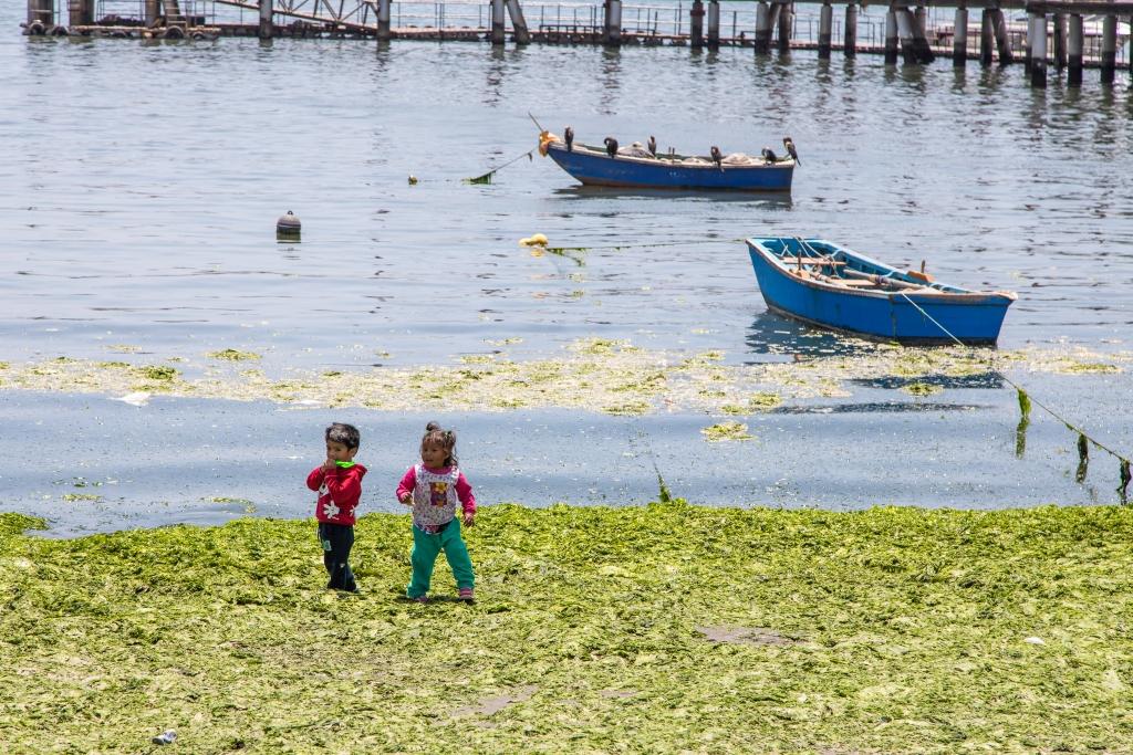 Peru_0013_Ballestas Inseln