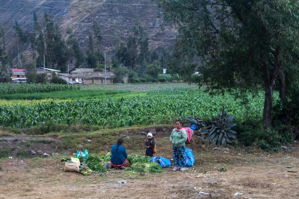 Peru_0137_ Ollantaytambo