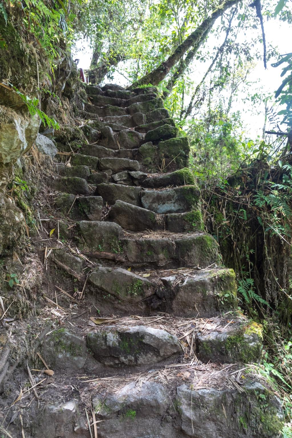 Peru_0148_Wiñay Wayna
