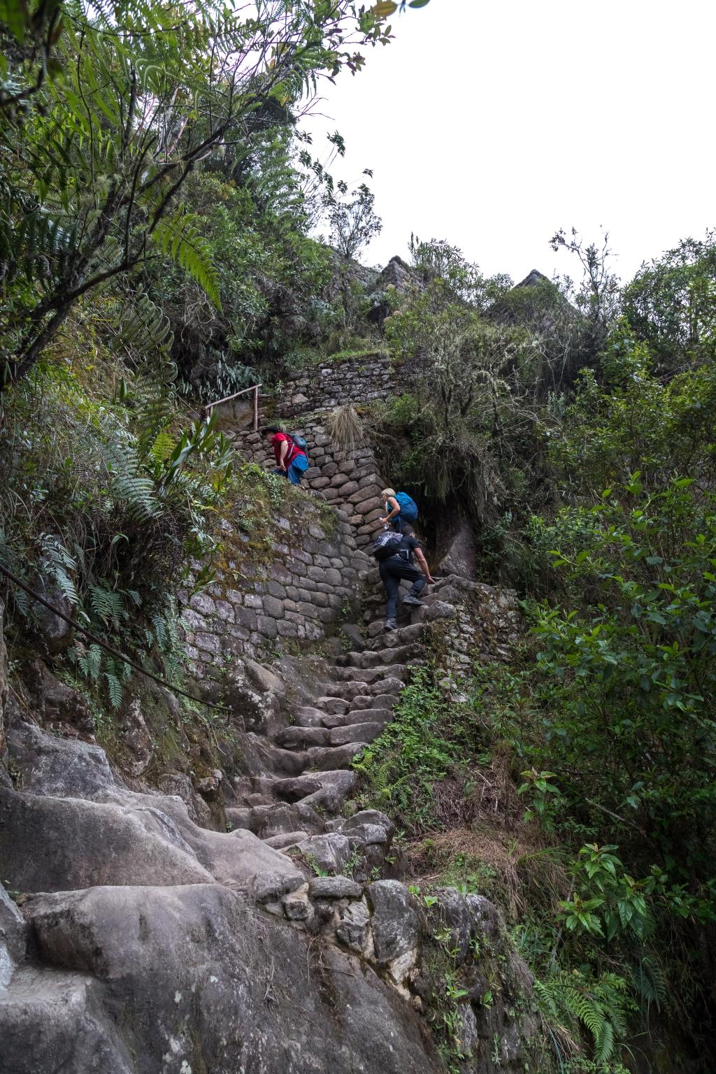 Peru_0162_Wayna Picchu