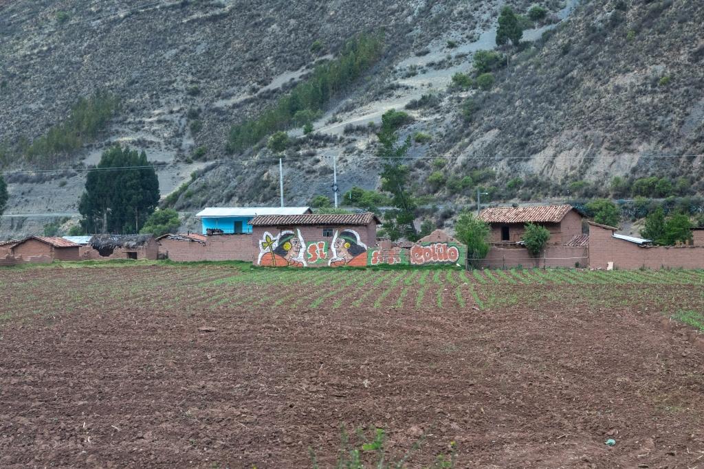 Peru_0171_Altiplano