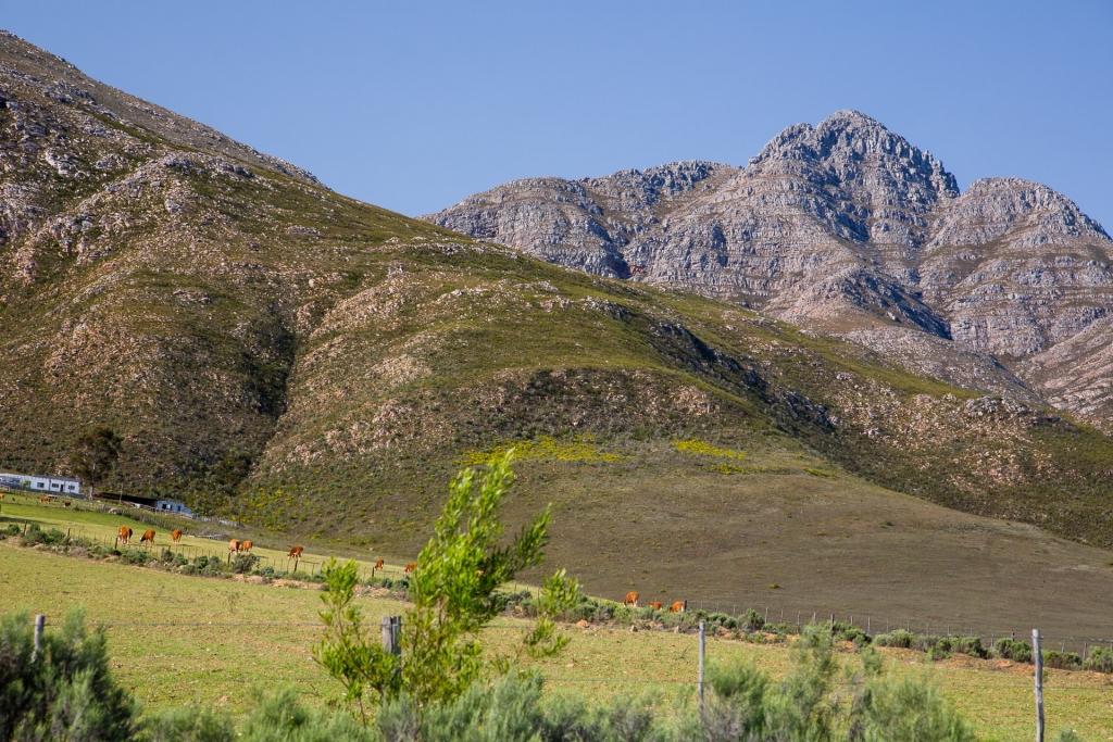 Südafrika_Swartberg Pass