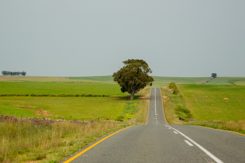 Südafrika_Farmland