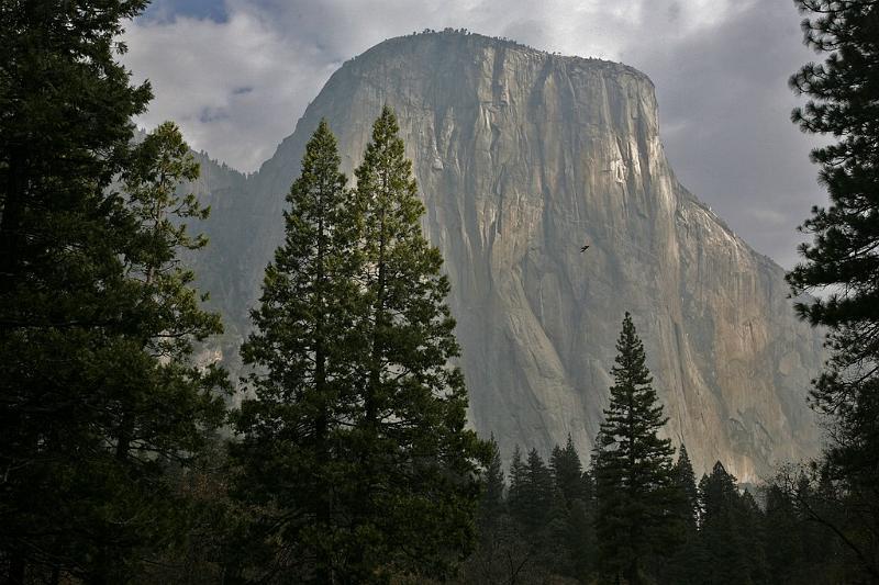 El Capitan, Yosemite N.P.